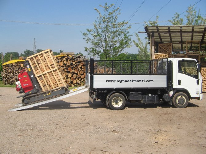 MONTI VITTORIO Production and sale of firewood.