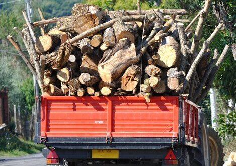 Trattore con rimorchio carico di legna da ardere