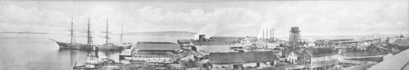 1912 Panoramic view of Hastings Sawmill