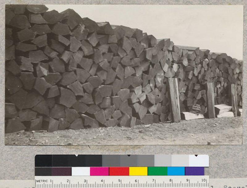 "1922 52"" redwood shingle bolts at Stoodley's Mill."