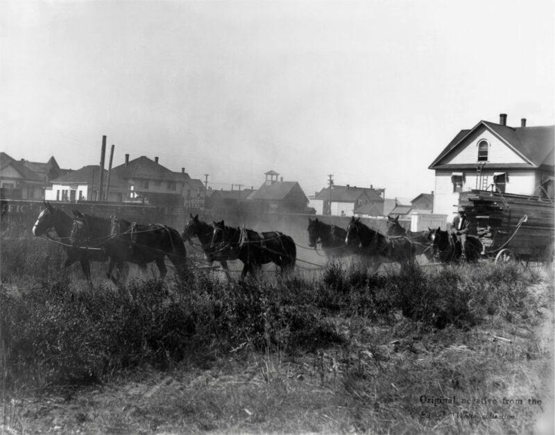 1900 Lumber wagon.