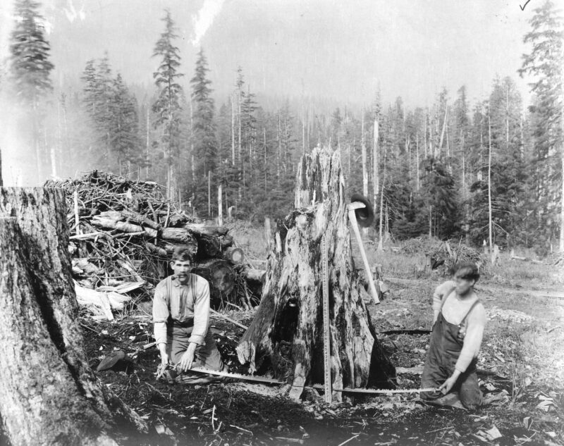 1910 Coquitlam Dam showing fallers at work.