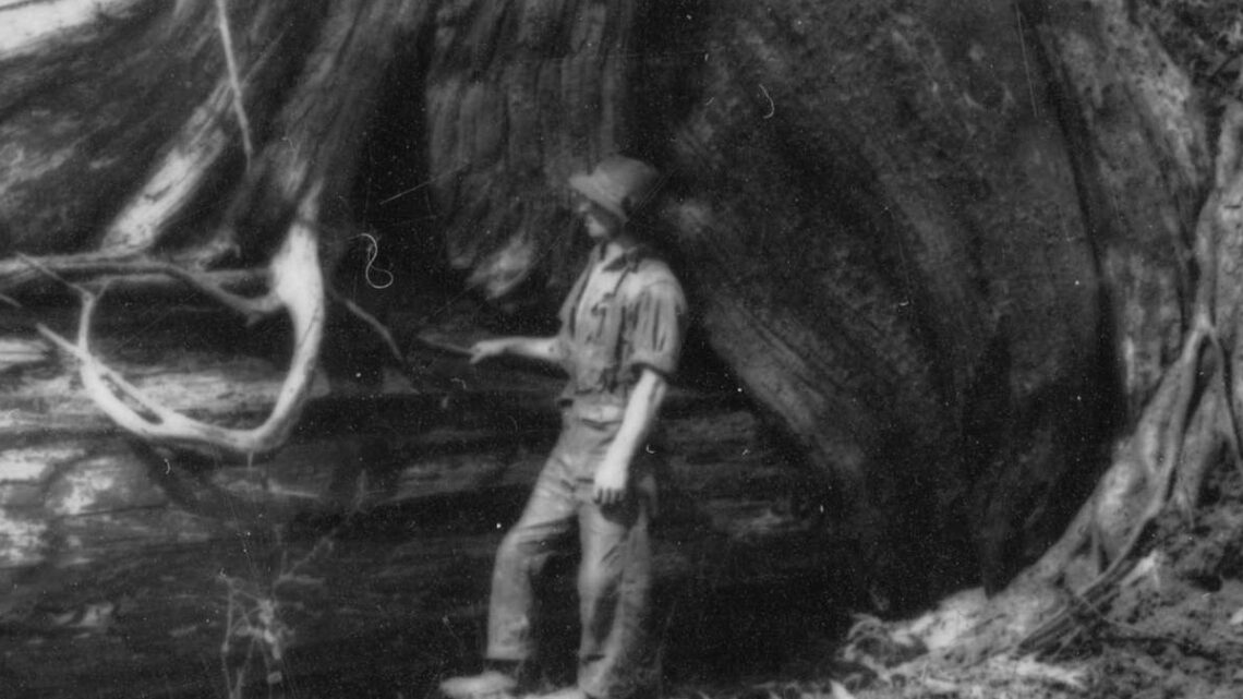 1915-1920 Lougheed logging camp.