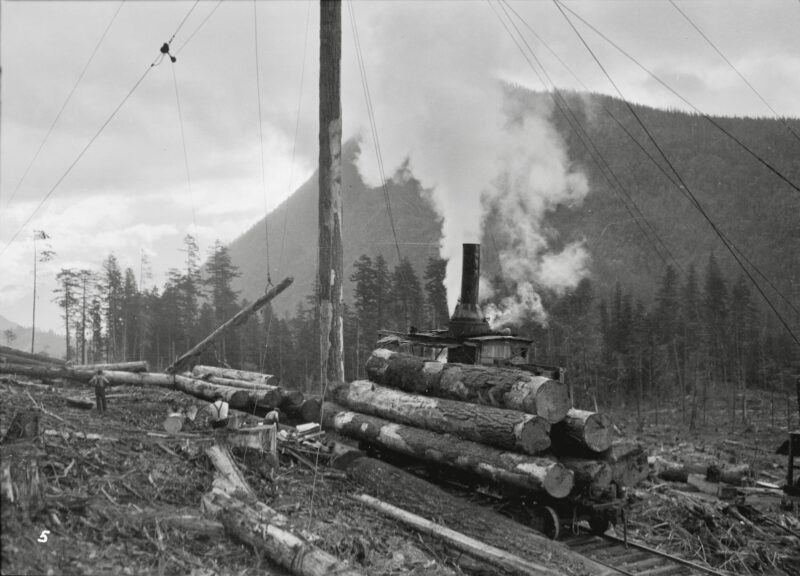 1932 Green Point Logging Co. Ltd. Spar tree log loading.