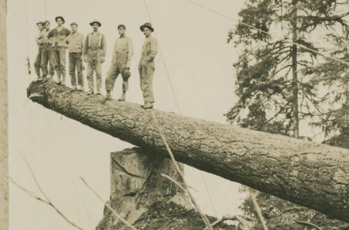 Seven men stand at the end of a 200-foot log being harvested.