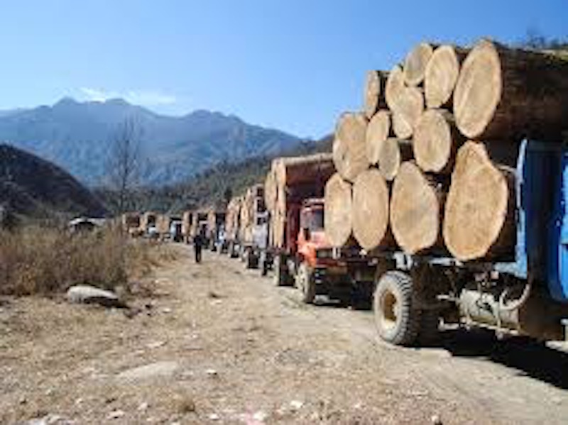 2015 Myanmar Sentences 153 Chinese to Life in Prison for Illegal Logging
