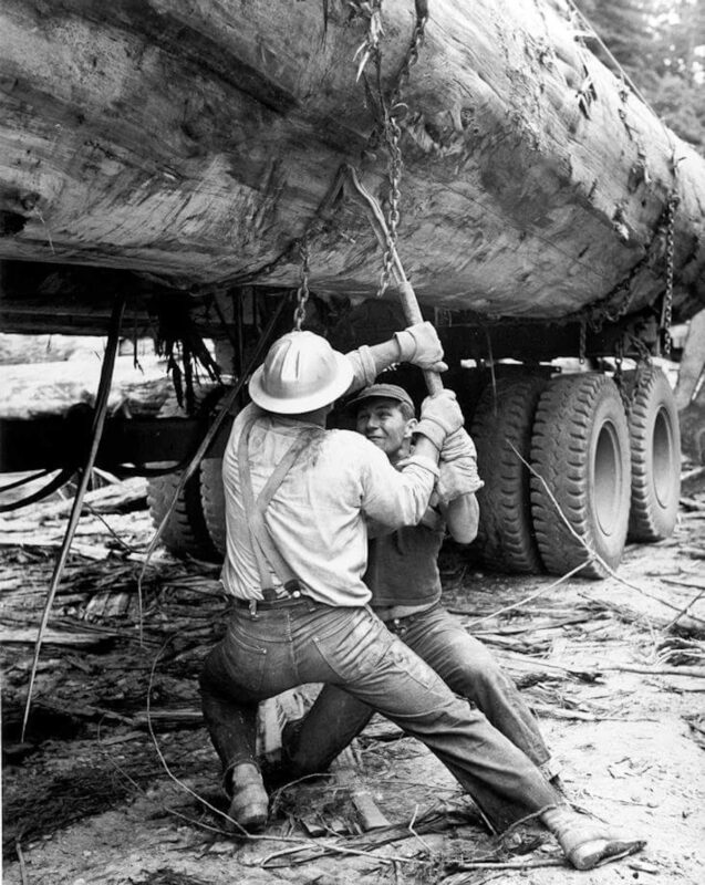Big log on a truck