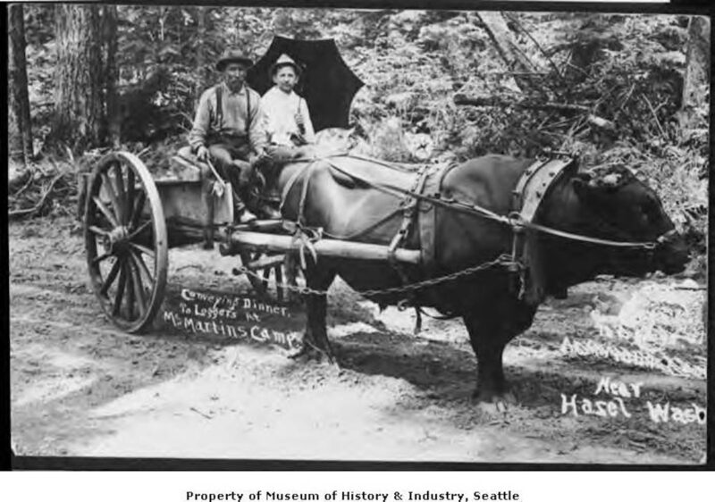 1910 McMartin's Camp