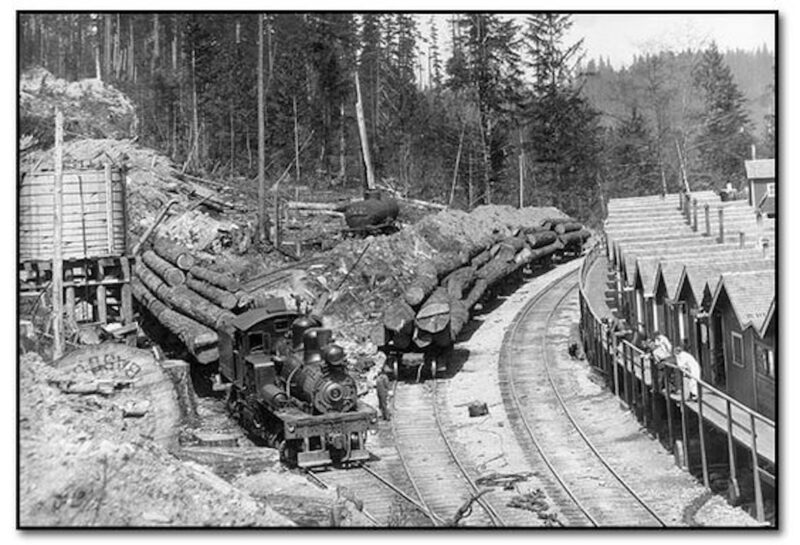 Train logging camp.