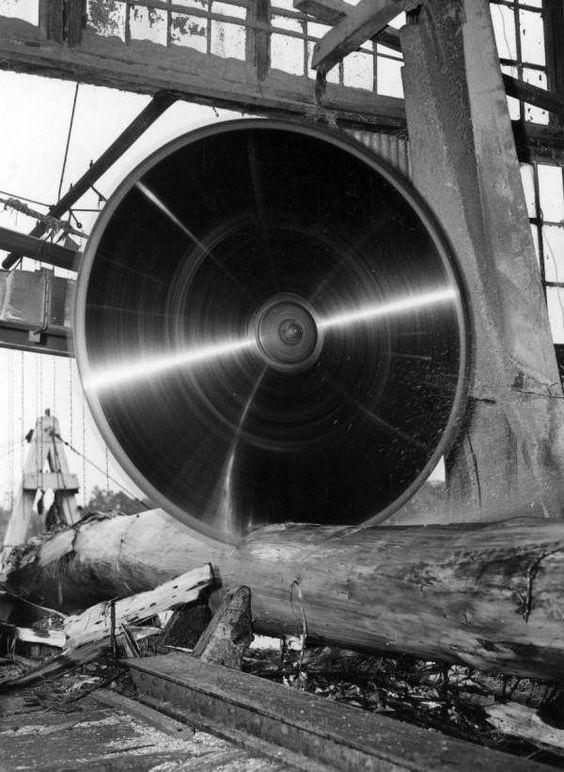Big circular saw cutting log at Lee Tidewater Cypress Company mill - Perry, Florida.