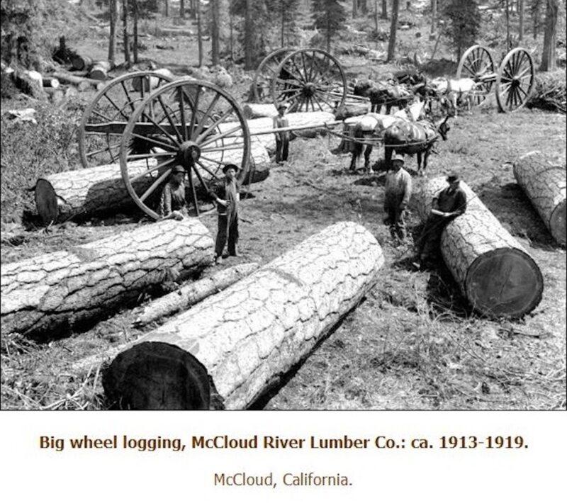 1913-1919 McCloud River Lumber Co.