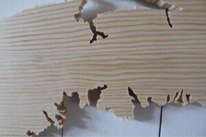 close up - Wood map Nova Scotia No. 80