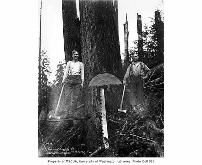 1930 Clemons Logging Company