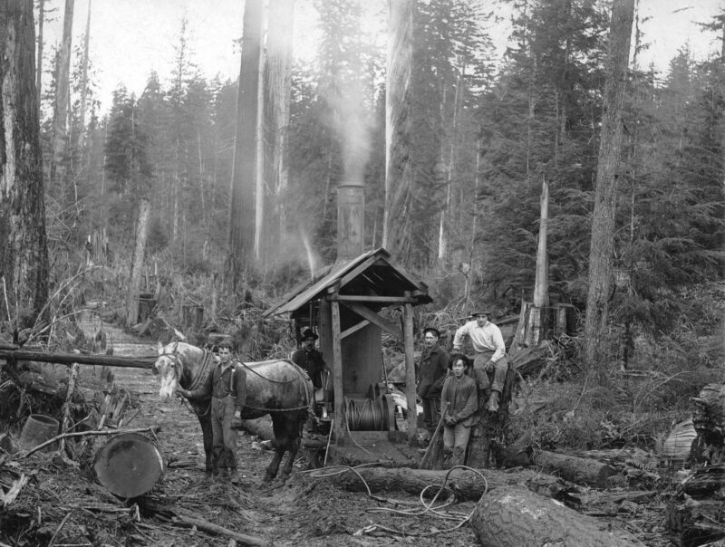 1900s-Donkey engine, horse, and logging crew on a skid road.