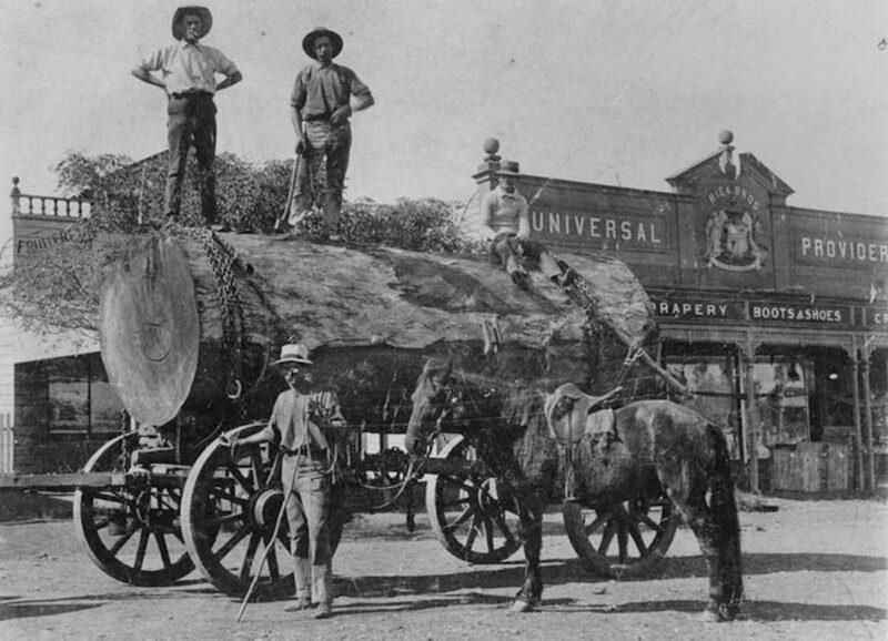 Horse drawing wagon.