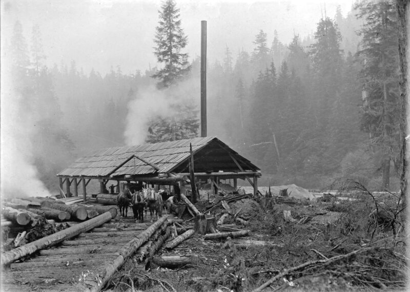 1900s Team of horses in front of an outdoor mill