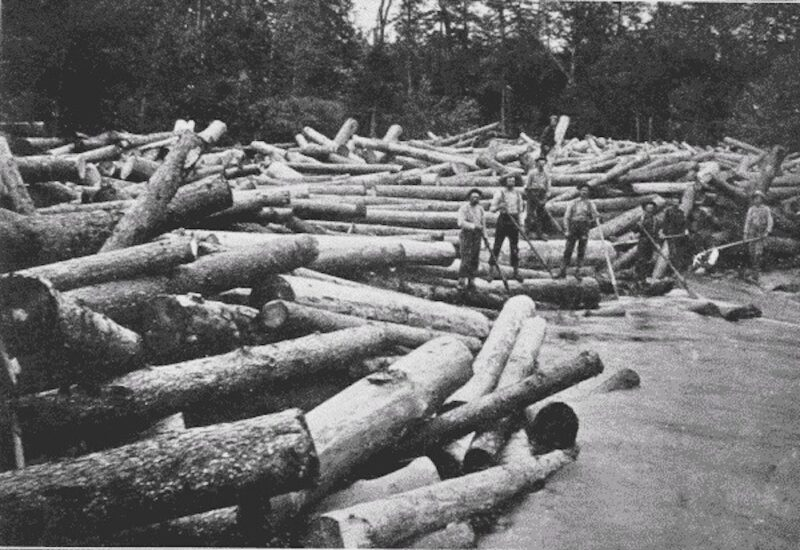 Log drivers sorting out a log jam.