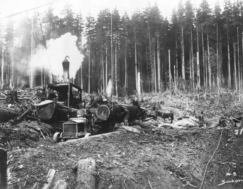 1912 Loading logs onto tractor.