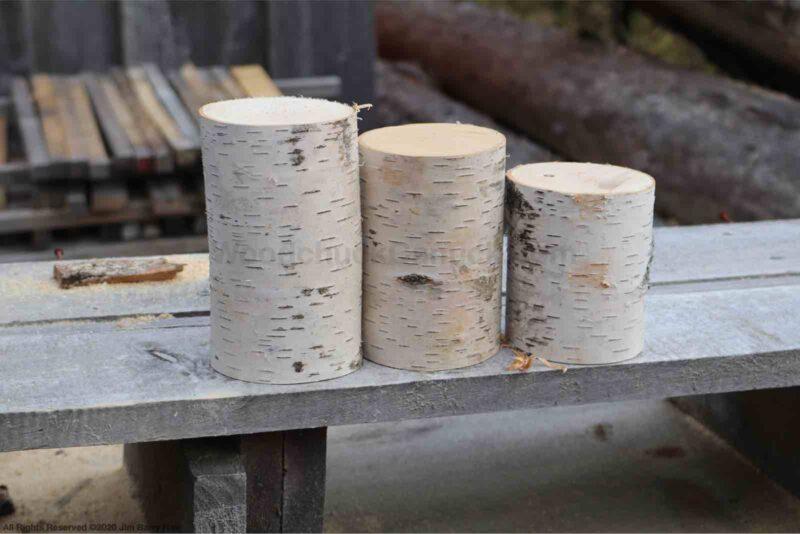 DIY birch candle holders, DIY birch mini trees.