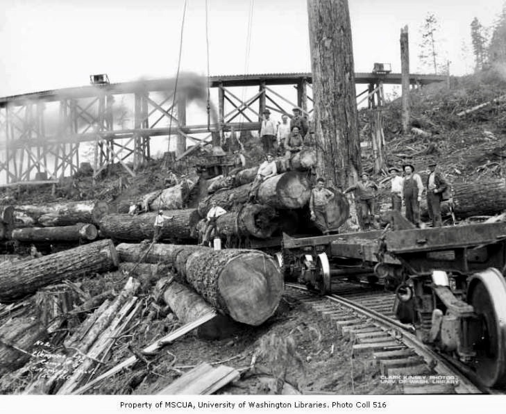 1930 Crew at loading site below railroad trestle, camp 3, Clemons Logging Company, near Melbourne.