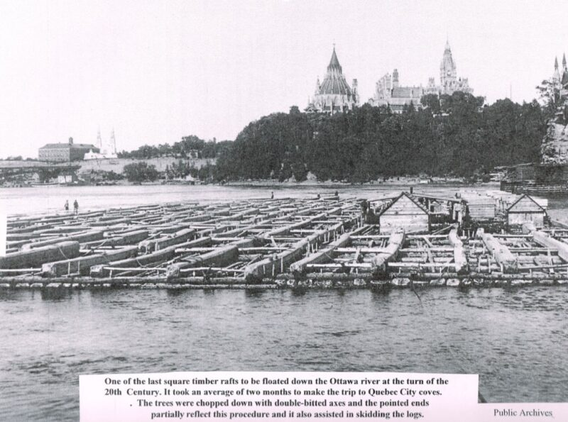 1900s Raft of Squared Timber