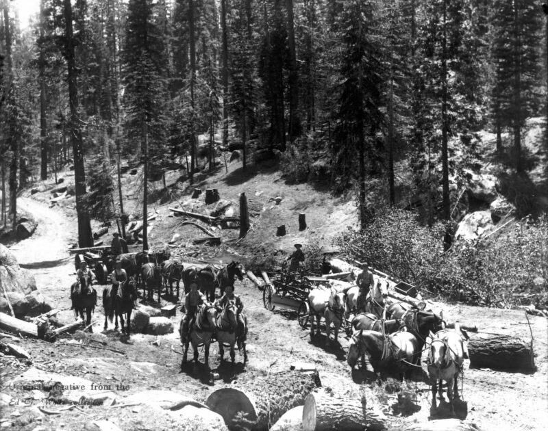 1900 Logging and grading roads.