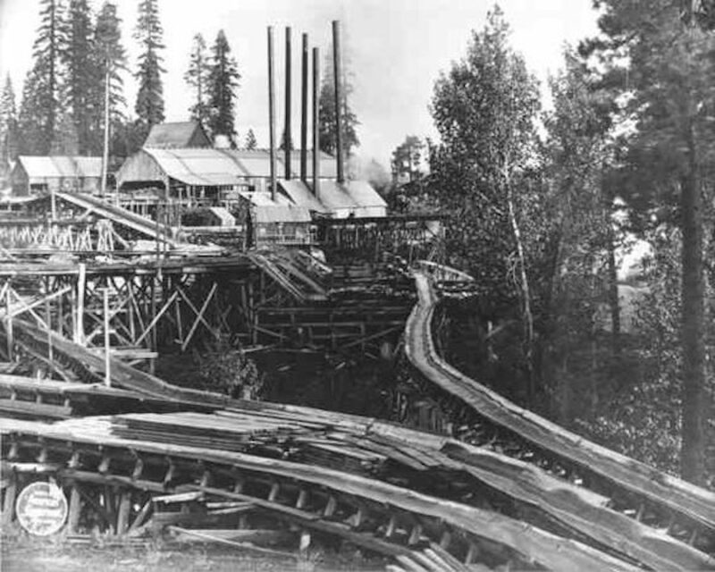 An unknown lumber mill with a complex maze.