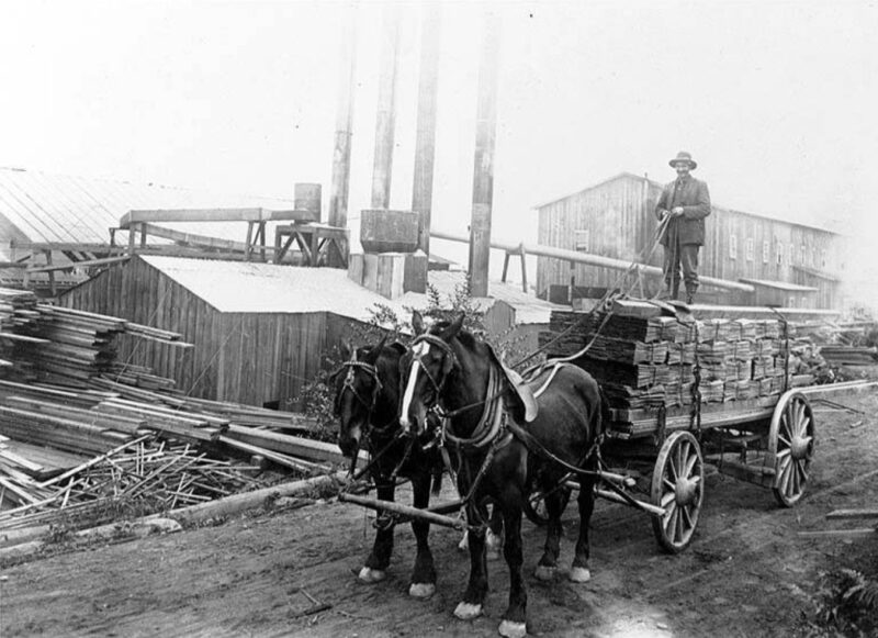 Horses, driver and wagon out with a shingle delivery.
