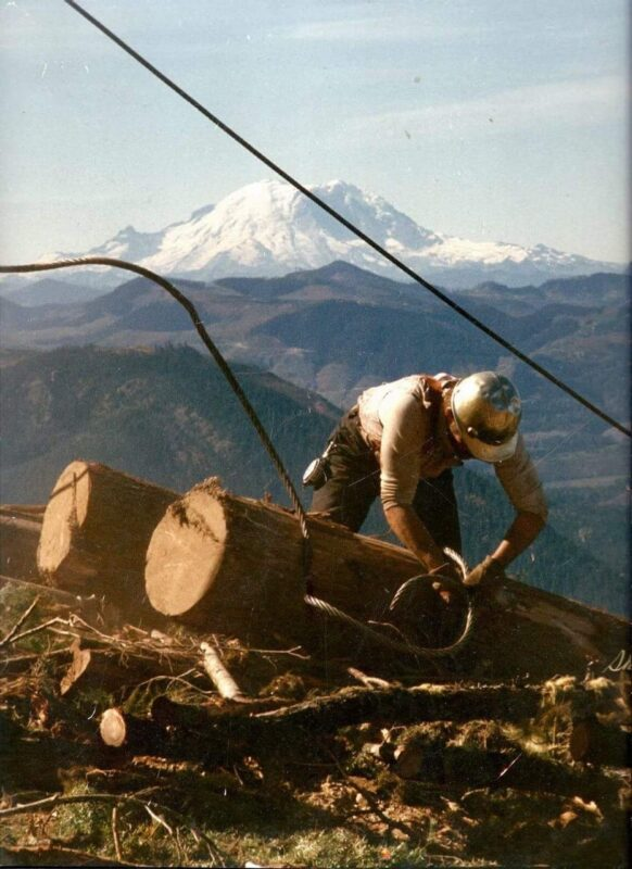 Choking logs with a beautiful view.