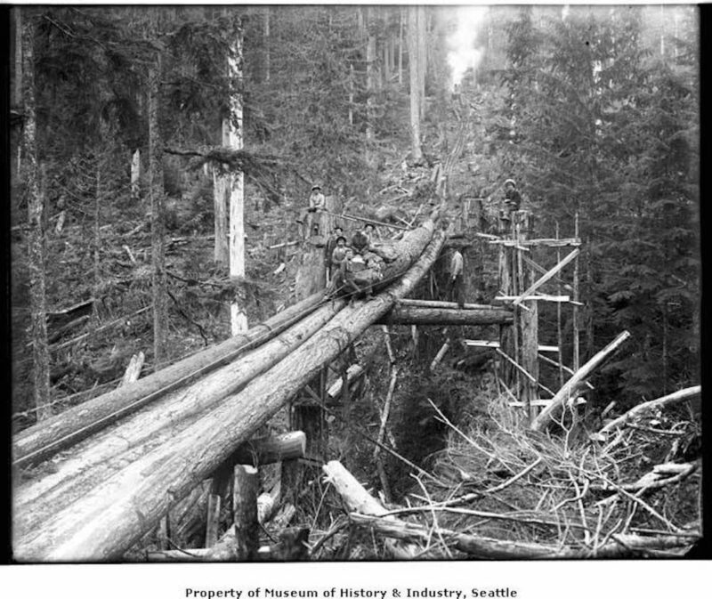 1910 Moving a log down a trailing chute