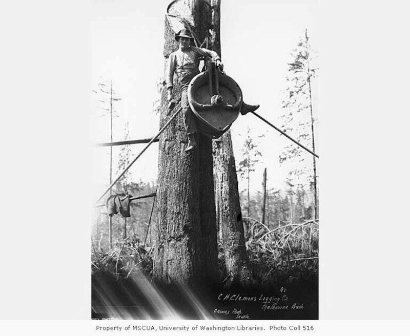 Clemens Logging Company