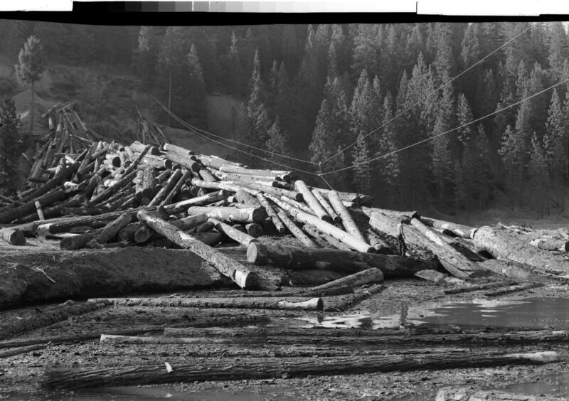 1948 Log Storage at Shasta Box, Douglas City, CA.