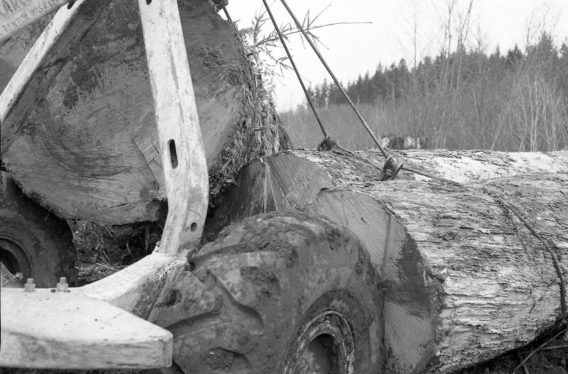 Skidder hauling big logs.