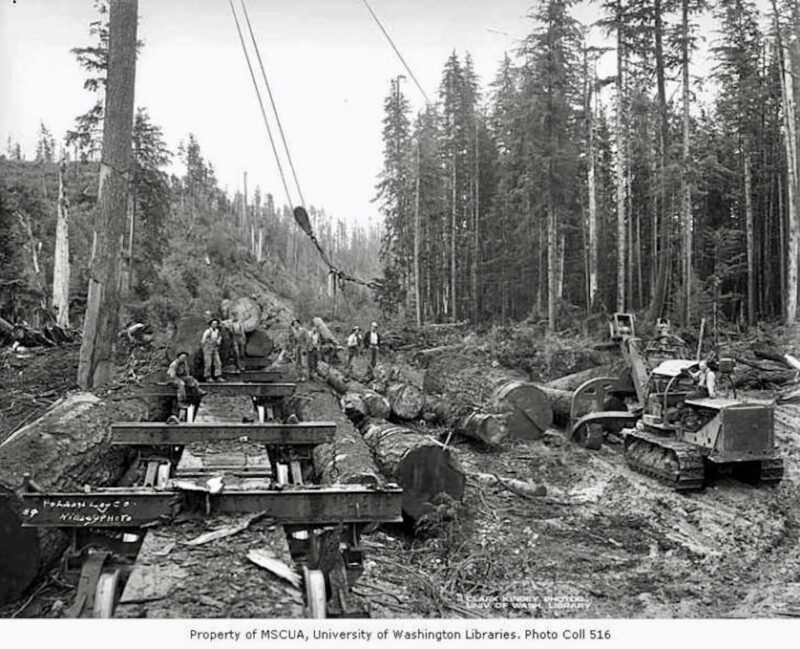 Crew at loading site with skeleton cars, Polson Logging Company