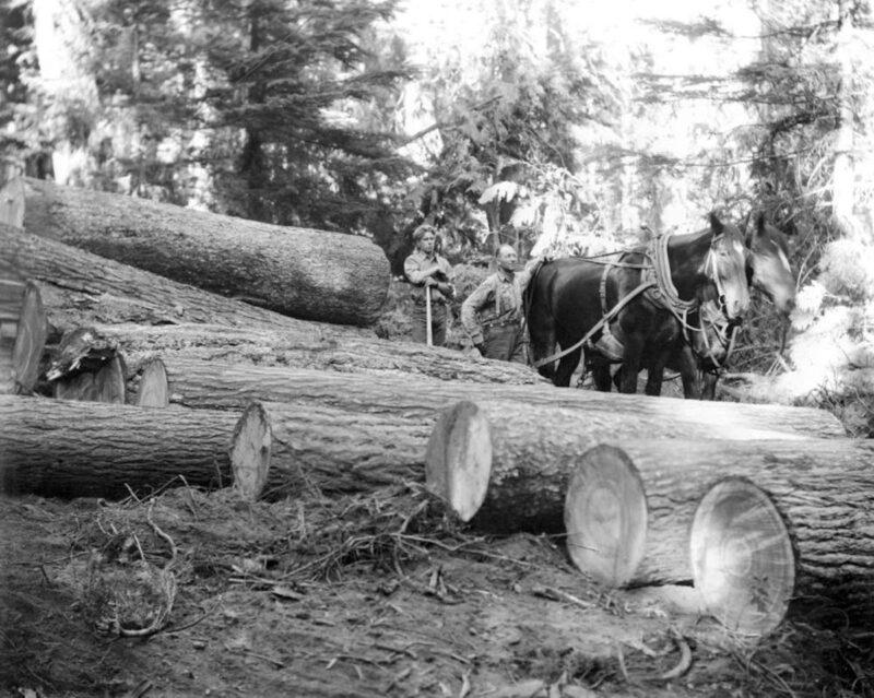 1920s Adams River Lumber Co.