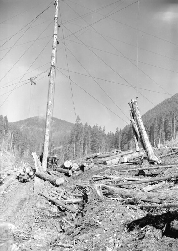 1940 Skidding logs to the yard in Youbou, BC.