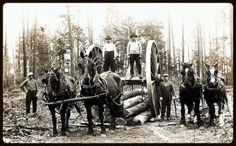 Logging in Michigan.