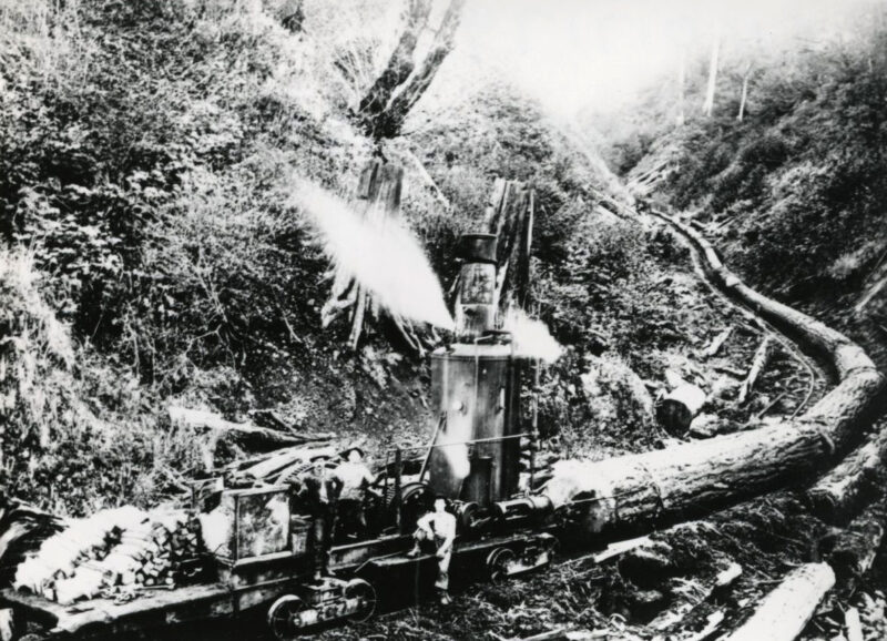 Steam skidder runs on tracks as logs are pulled behind, Tillamook Co.