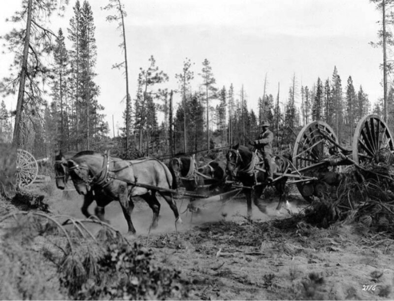 Slip tongue cart old logging photos