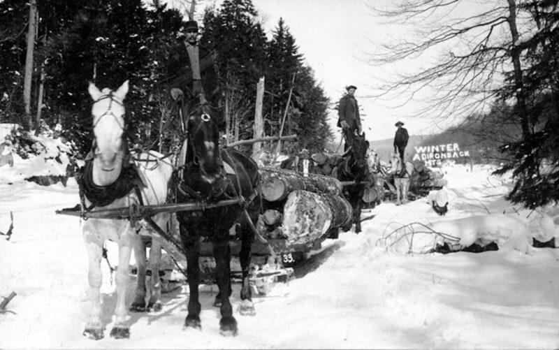 Winter Adirondack logging.