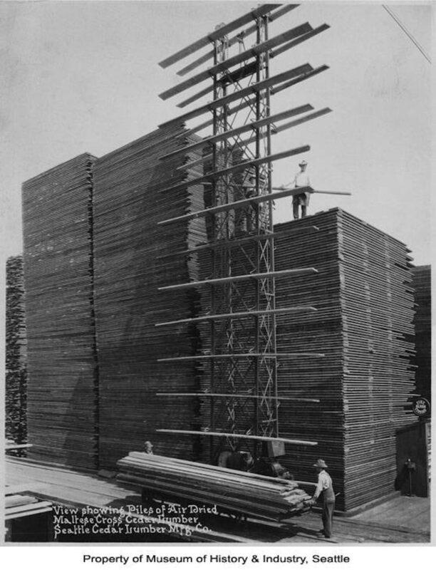 1920 Piles of air dried Maltese Cross cedar lumber.