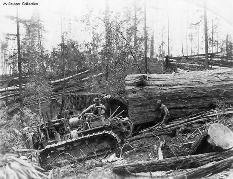 Tractor skidding big log.
