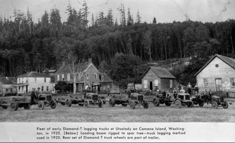 1920 Fleet of Diamond T logging trucks.