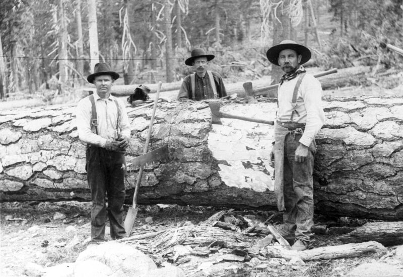 1900 Lyonsville Lumbering.