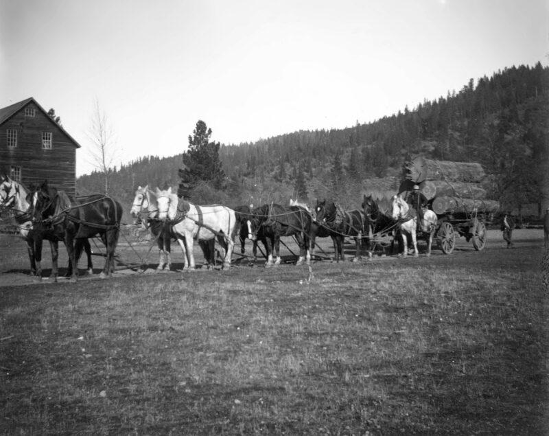 1900 Taylorsville Grist Mill.