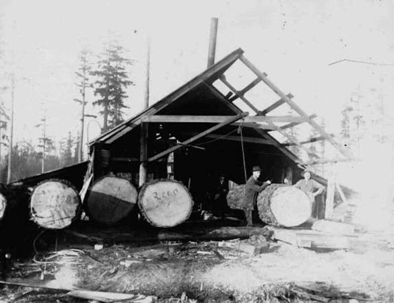1900 Edward J. Mace sawmill