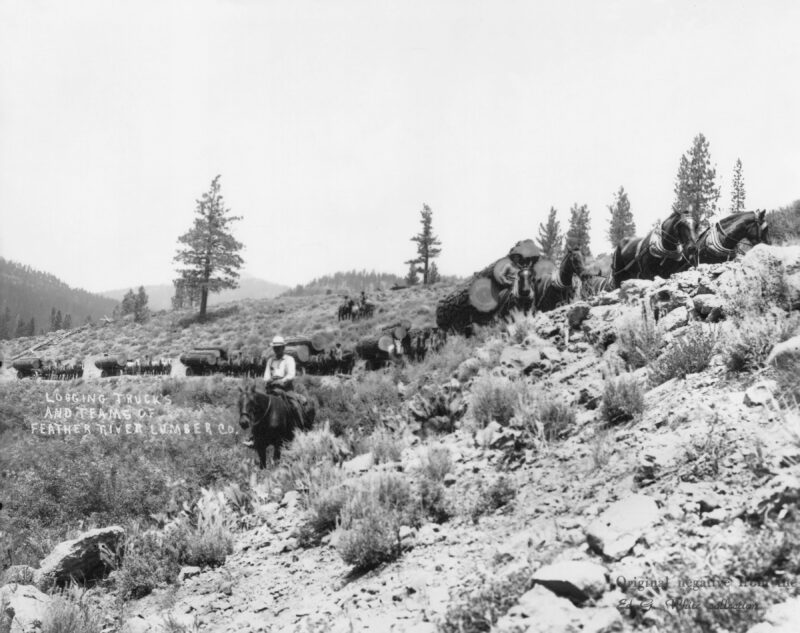 1900 Feather River Logging Company.