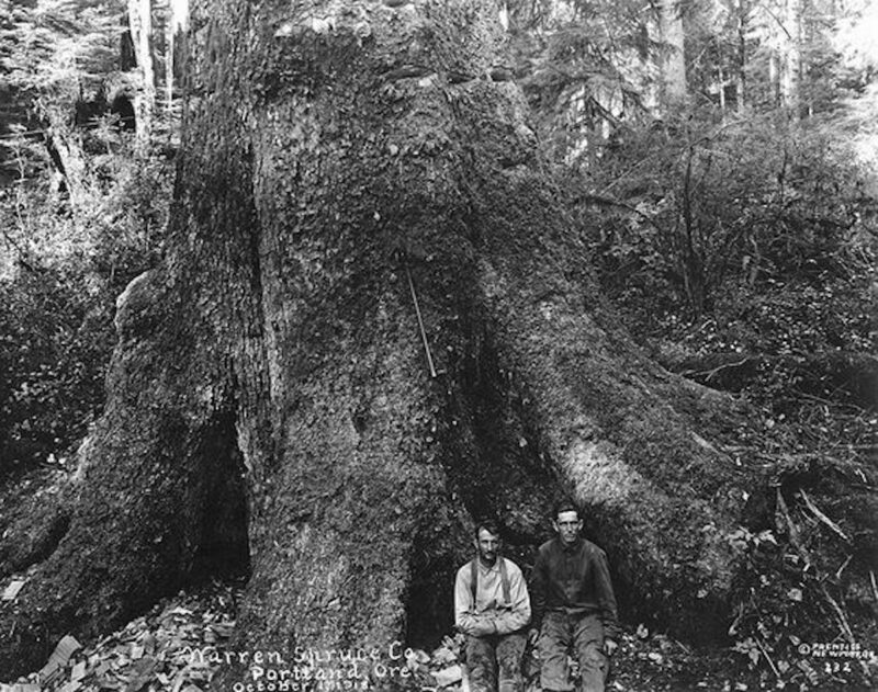1918 Warren Spruce Co., Portland Oregon October