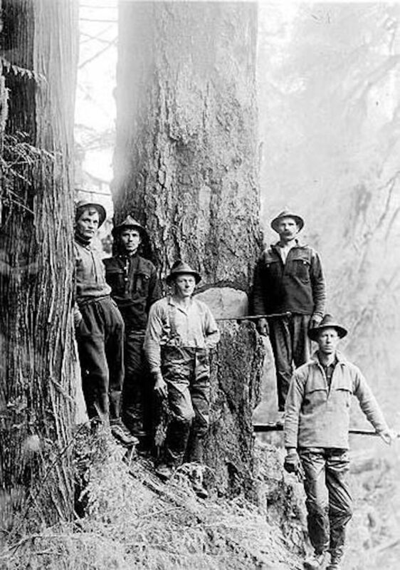Five woodsmen pause for a photo on some steep terrain.