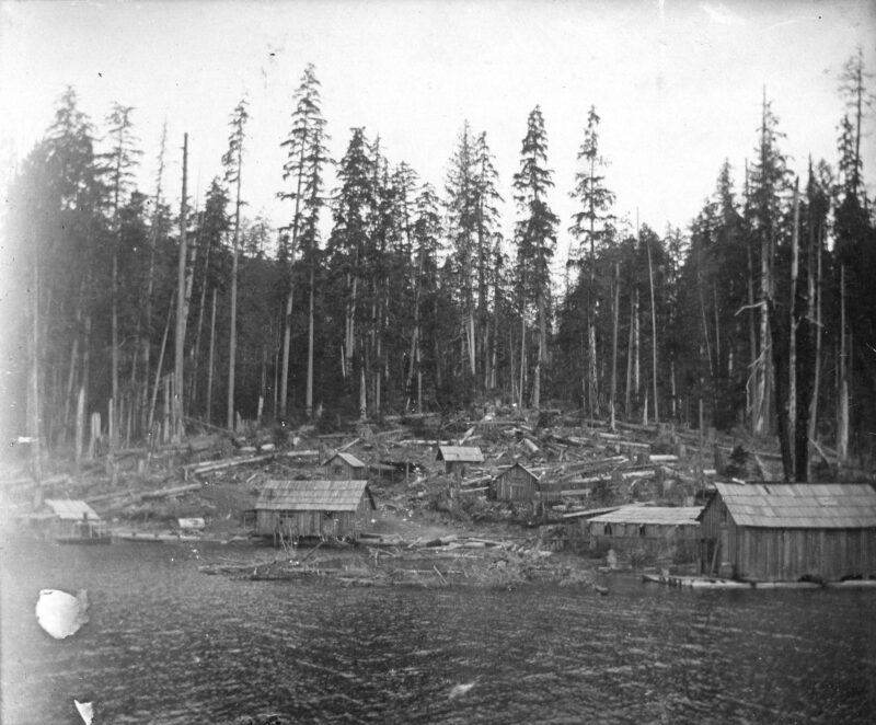 1890s View of a logging camp from the water.
